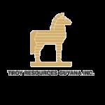 Troy_resources_logo